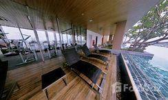 Photos 2 of the Communal Pool at The Lofts Ekkamai