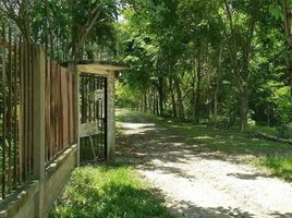 4 Bedrooms House for sale in Nong Khwai, Chiang Mai Hang Dong Land&House