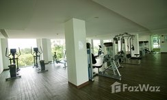 Photos 3 of the Communal Gym at Amazon Residence