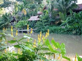 3 Bedrooms Property for sale in Khua Mung, Chiang Mai Riverside Lanna House at Saraphi