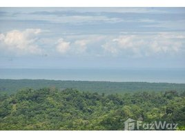 Puntarenas 4 Hectares, Ocean View Dream Property, Costa Rica - Ready to Build, Puerto Cortés, Puntarenas N/A 土地 售