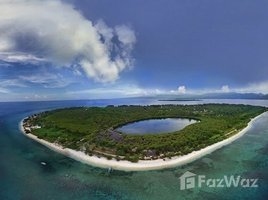 West Nusa Tenggara Bayan Beautiful Development Land in Gili Meno for Sale N/A 土地 售