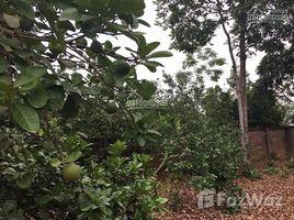 N/A Land for sale in Hoa Son, Hoa Binh Nhượng gấp đất DT 10.206m2 có 400m2 đất ở, ao cá, 200 cây bưởi, bằng phằng Hòa Sơn, Lương Sơn, HB
