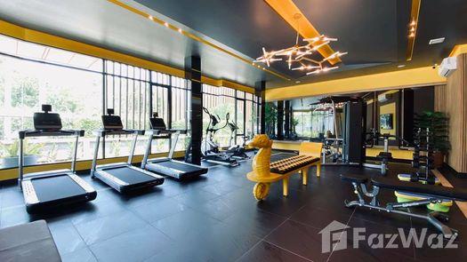 Photos 1 of the Communal Gym at Carapace Hua Hin