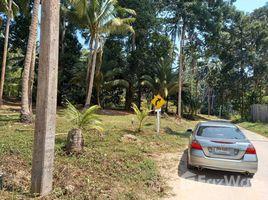 N/A ที่ดิน ขาย ใน มะเร็ต, เกาะสมุย Land for Sale in Lamai, Koh Samui