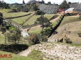 N/A Terreno (Parcela) en venta en , Antioquia VEREDA CAMARGO, EL CARMEN DE VIBORAL, El Carmen, Antioqu�a