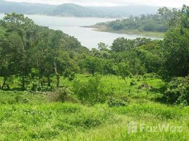 Guanacaste Lot B10: Lake Arenal view lot ready for construction, San Luis, Guanacaste N/A 土地 售