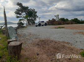 攀牙 Lo Yung 33 Rai land inTakua Thung District, Phang-Nga N/A 土地 售