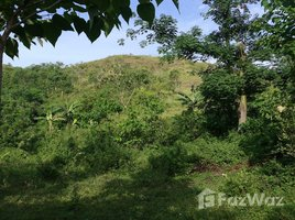 N/A Property for sale in Ilagan City, Cagayan Valley 62 Rai Land Plot For Sale in Isabella