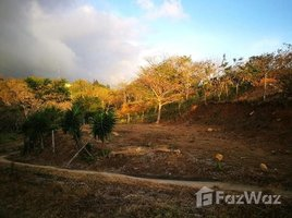 Guanacaste LOTE CRISTIN: Mountain and Countryside Home Construction Site For Sale in Barrio Esparanza, Barrio Esparanza, Guanacaste N/A 土地 售