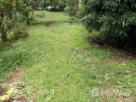 那空帕农 Nai Mueang 26 Rai Land For Sale Near Mekong River N/A 土地 售
