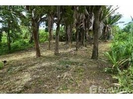 N/A Immobilier a vendre à , Bay Islands Pollytilly, Roatan, Islas de la Bahia