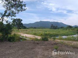 ขายที่ดิน N/A ใน หินเหล็กไฟ, หัวหิน Land 15 Rai Near Black Moutain Golf Course