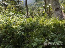 N/A Property for sale in Lebak, Soccsksargen Land For Sale In Ragandang