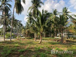 N/A ที่ดิน ขาย ใน มะเร็ต, เกาะสมุย 1 Rai Land for Sale in Lamai Area