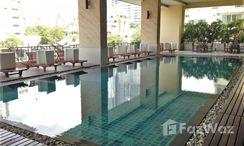 Photos 1 of the Communal Pool at Prime Mansion Sukhumvit 31