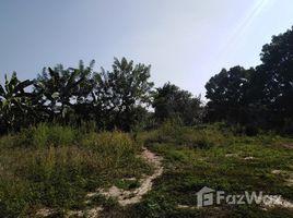 Guelmim Es Semara Na Zag Land for sale 49-3-29 Rai N/A 土地 售