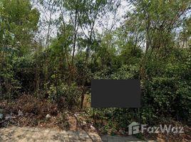 龙仔厝 Talat Krathum Baen Nice Land for Sale in Krathum Baen N/A 土地 售