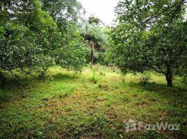 N/A Terreno (Parcela) en venta en , Alajuela CRIEBER 2: Countryside and Mountain Agricultural Land For Sale in Aguas Claras, Aguas Claras, Alajuela