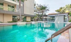 Photos 1 of the Communal Pool at Double Tree Residence