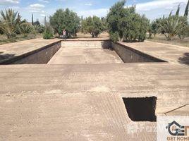 Marrakech Tensift Al Haouz Na Menara Gueliz Terrain de 1 hectare prés de l'école Américain N/A 土地 售