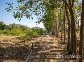 N/A Property for sale in Ban Kao, Kanchanaburi 19 Rai Dream Plantation in Kanchanaburi