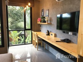 Studio Condo for rent in Rawai, Phuket ReLife The Windy