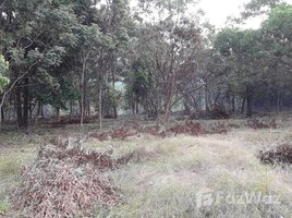 N/A Property for sale in Wang Krachae, Trat 14 Rai Land For Sale in Trat