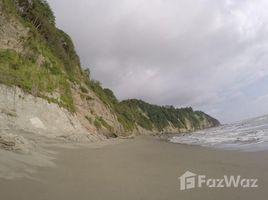 Земельный участок, N/A на продажу в Quingue Olmedo Perdomo Franco, Esmeraldas Ocean Front: Perfect Land directly at the Ocean, Caimito, Esmeraldas