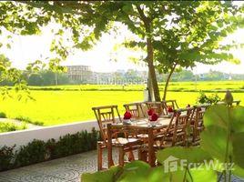 廣南省 Cam Chau Đất trung tâm Hội An 3 mặt view lúa đã xin chủ trương xây khách sạn N/A 土地 售