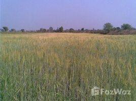 Bhopal, मध्य प्रदेश Nipaniya Jaat on Berasiya road, Berasia, Madhya Pradesh में N/A भूमि बिक्री के लिए