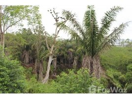N/A Land for sale in Yasuni, Orellana VISTA MAR: JUST RELEASED to the PUBLIC-40 Amazing Ocean & Jungle View Lots-This is something very un, Olón, Santa Elena