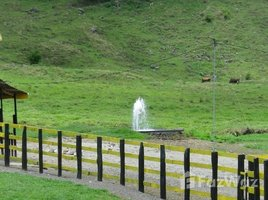 N/A Land for sale in , Alajuela San Ramon, Alajuela, Address available on request