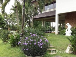 2 Bedrooms House for sale in Nong Han, Chiang Mai 2 Storeys House with 3 Rai Land in San Sai