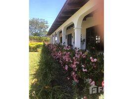Cartago Turrialba Santa Cruz, Cartago, Address available on request N/A 土地 售