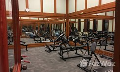 Photos 3 of the Communal Gym at Las Colinas