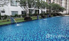 Photos 2 of the 游泳池 at Supalai Monte at Viang