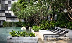 Photos 7 of the Communal Pool at Quattro By Sansiri