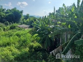 N/A Land for sale in Huai Sai, Chiang Mai Traditional village river front close to PTIS, Prem College