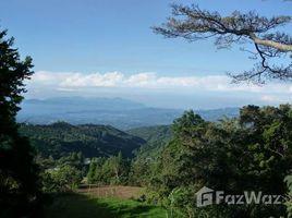 Alajuela Sarchi, Alajuela, Costa Rica, Sarchi, Alajuela 5 卧室 屋 售