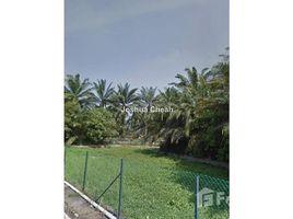 槟城 Mukim 12 Sungai Bakap, Penang N/A 土地 售