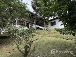 Limon Countryside Villa For Sale in Siquirres, Siquirres, Limón 2 卧室 房产 售