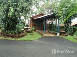 Alajuela Carrillos Bajo de Poas, Alajuela Costa Rica, Poas, Alajuela N/A 土地 售