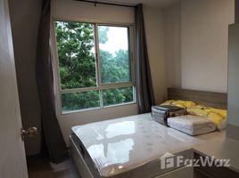 Studio Condo for rent in Chomphon, Bangkok The Tree Ladprao 15