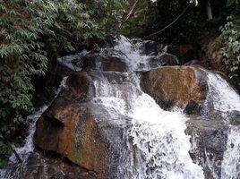 N/A Land for sale in Tram Hanh, Lam Dong Bán đất nông nghiệp có thác nước lớn thích hợp làm trang trại, du lịch