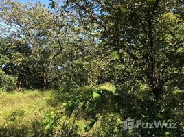 Guanacaste Montenegro, Guanacaste, Address available on request N/A 土地 售
