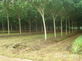 N/A Land for sale in Kaset Suwan, Pattaya Chon Buri, 2 to 6 Rai of Prime Chanote Land, Road,Elec,Water