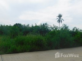 N/A Property for sale in Phla, Rayong Cheap Land in Ban Chang near U Tapao Airport