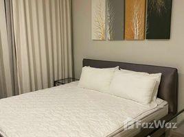 เช่าคอนโด 1 ห้องนอน ใน ลุมพินี, กรุงเทพมหานคร โนเบิล เพลินจิต