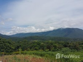 N/A Property for sale in Chiang Dao, Chiang Mai Land For Sale Chiangdao Mountain View